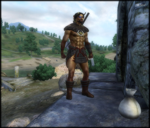 Elder Scrolls IV: Oblivion, The - Нестандартные расы