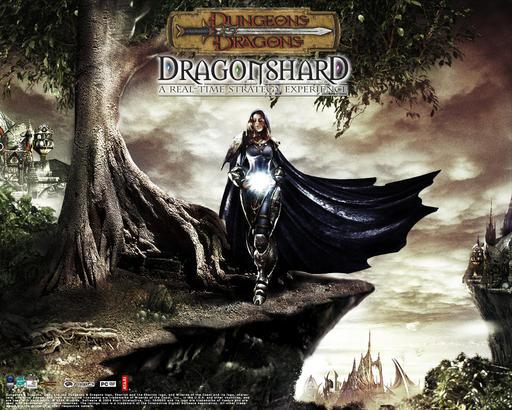 Dragonshard: Кристалл всевластья - Почти Dungeons & Dragons.