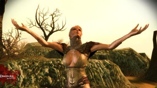 """Dragon Age: Начало - Соратники в """"Пробуждении"""""""