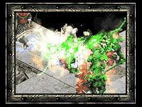 Diablo II - Обзор Эрадана. Друид. Часть 2