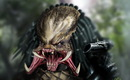 The_predator_by_vail_akatosh