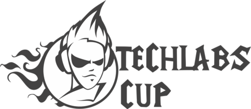 Финал TECHLABS CUP RU 2012: Cybersport