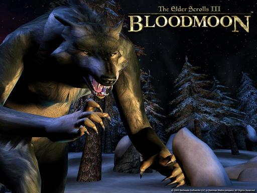Elder Scrolls III: Morrowind, The - Я злой и страшный серый волк, я в идиотах знаю толк!
