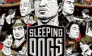 Gaming_sleeping_dogs_box_art