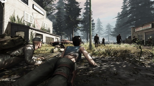 War Z, The - The War Z vs DayZ