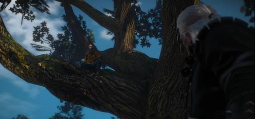 """Ведьмак 3: Дикая Охота - Ведьмак 3. Дополнение """"Каменные сердца"""". Прохождение основного сюжета. Часть первая"""