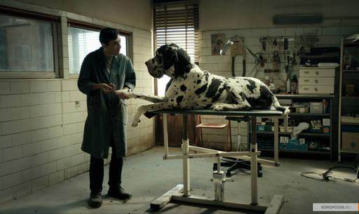 """Про кино - """"Догмен"""". Собачник или человек-собака?"""