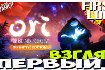 Ori and the blind forest, Definitive Edition - Первый взгляд